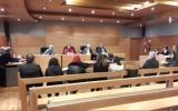 O Gabinete da Família, da Criança e do Jovem e a Comissão Nacional de Promoção dos Direitos e Proteção de Crianças e Jovens